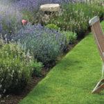 trawnik w ogrodzie_fot. Honda